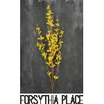 forsythia-place